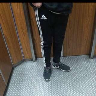 adidas 褲子 正版