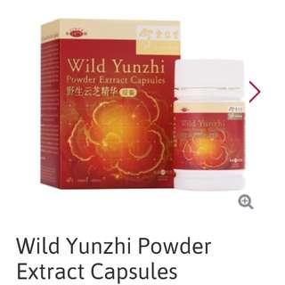 Supplement - Wild Yunzhi Powder Extract Capsules