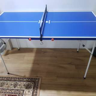 Mini Table tennis.