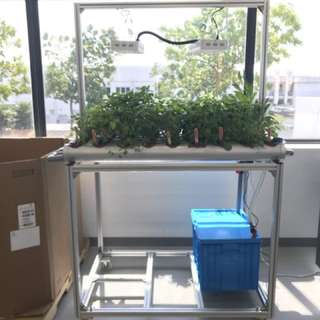 Hydroponic indoor customised automatic system
