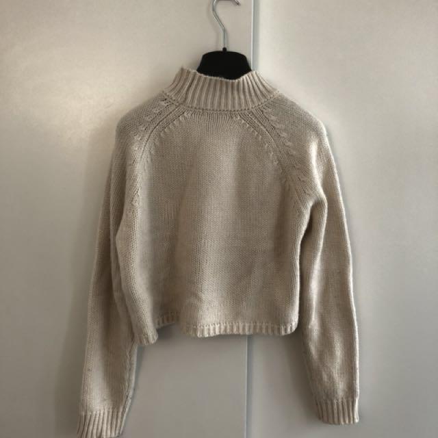 F21 Crop Turtleneck Sweater