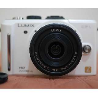 Panasonic Lumix GF1 camera plus Lumix 14mm lens -Canon Nikon Olympus LX7 GX8