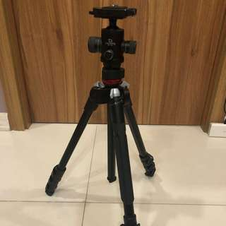 Tripod Manfrotto befree live with Giottos Ball head