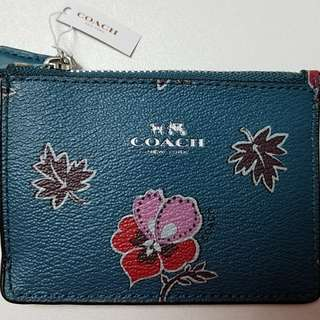 Coach coincase & card holder