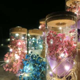 Dried Baby Breath with fairy lights and colorful LED lights