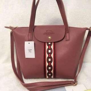 Longchamp bag size : 9*12 inches