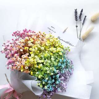 Rainbow baby's breath Flower bouquet, real flowers 🌸