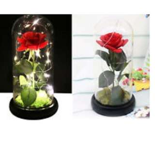 VALENTINES DAY Rose in a Jar - LED (LAST PIECE)