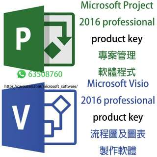 【Official 正版】Microsoft Visio Project