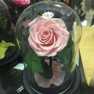 Preserved flower 💖