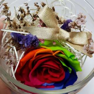 Real Dried Colourful Rose (A Beautiful gift that can last forever! )#2