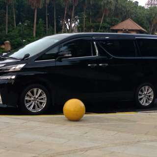 Chineae New Year limo