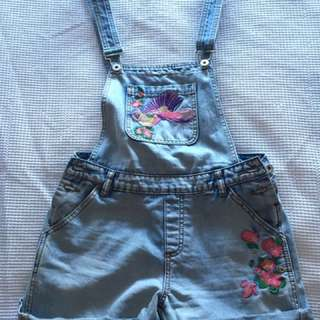 Embroidered overalls