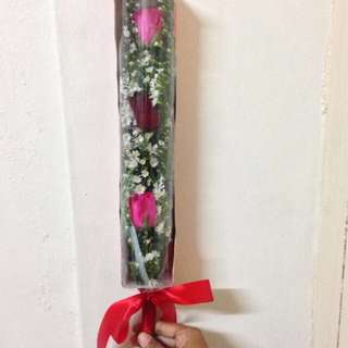 3 pcs Roses