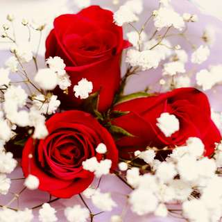 VDAY Rose Bouquet - FINAL ORDERS BY 13 FEB 2018 9:00PM