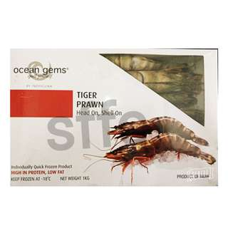 印度洋野生虎蝦 India Tiger Prawn