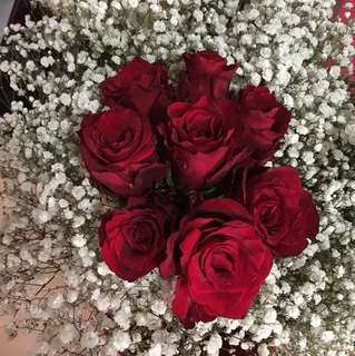 Valentine Red Rose with white baby breath