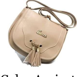 Gucci sling bag size : 9 inches