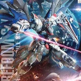 Gundam MG Freedom 2.0 Gunpla
