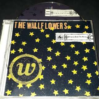 The wallflowers (bring down the horse) cd - Bob Dylan son Jakob Dylan solo album
