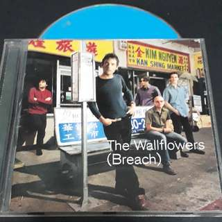 The wallflowers (beach) cd - Bob Dylan son Jakob Dylan solo album.
