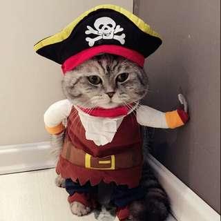 Pakaian kucing ., costum kucing lucu