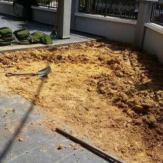Rumput karpet tnm 1 kaki 3.8 saip sekali upah saipa nk pls wssp