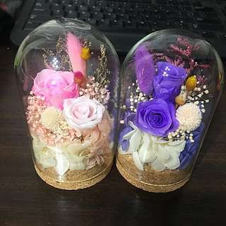 (SOLD) Real Preserved roses in dome glass