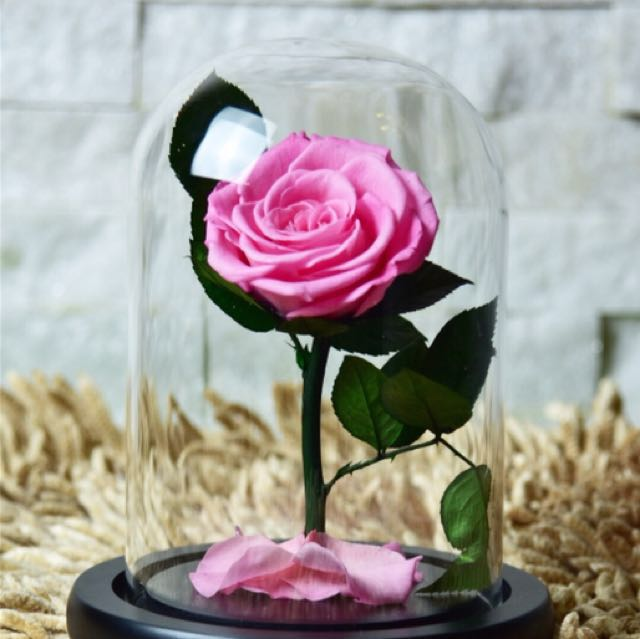 Beauty and the Beast Inspired Preserved Flower