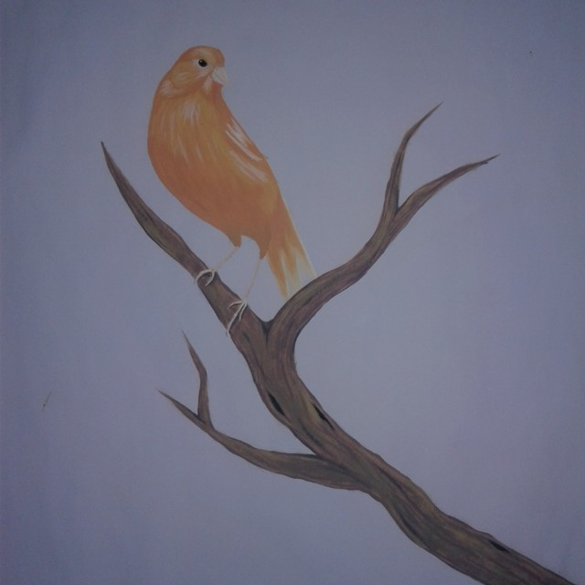 Panting of a canary