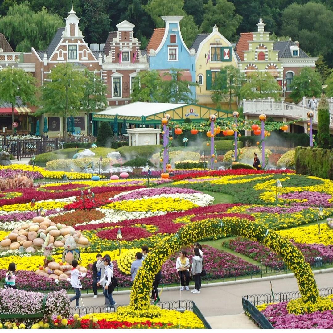 Seoul - Everland Themepark Admission Ticket