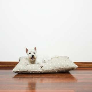 Mog & Bone Futon for Dogs