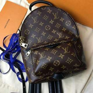 Louis vuitton palm springs PM