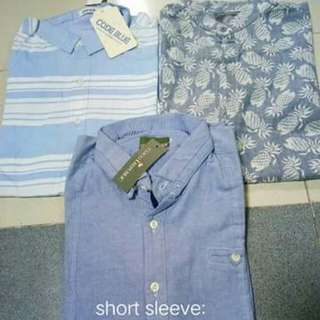 Short sleeves *small* bnew