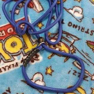 寵物P字鍊牽繩【藍】