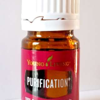 [FREE NM] Young Living Purification Essential Oil 5ml