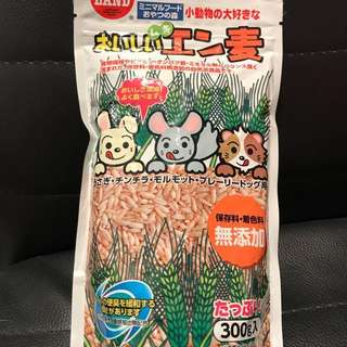 Japan's Minimal Land's Hulled Oats for small animals like guinea pigs, hamsters and rabbits