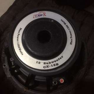 "Double coiled 12"" subwoofer"