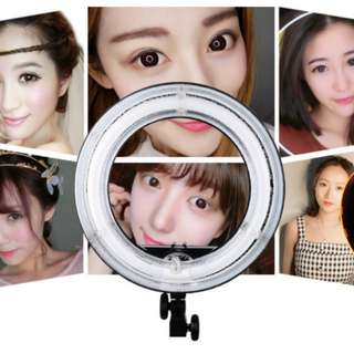BN Ring Light head portable (no stand)