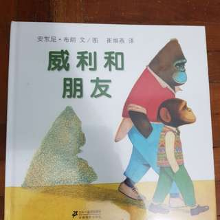 (CHINESE BOOK) willy and hugh by anthony browne