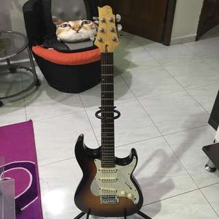 Electric Guitar With Gig Bag