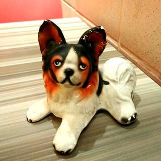 Cute & Sweet Dog Miniature