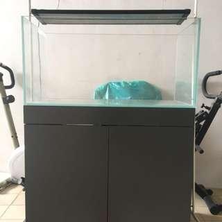 Cheap fish tank set