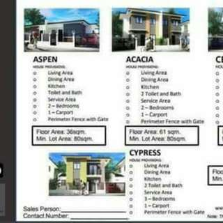 TERRAVILLE HOUSE AND LOT at Victorias City Negros Occidental