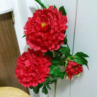Beautiful last stalk 2 red large flowers for CNY