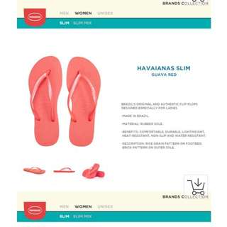 Havaianas slipper brand new with tag