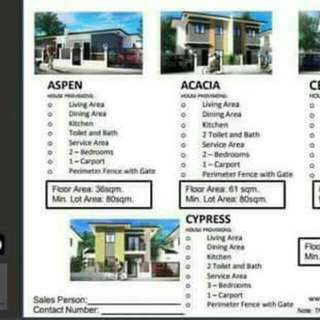 TERRAVILLE HOUSE AND LOT @ VICTORIAS CITY NEGROS OCC.