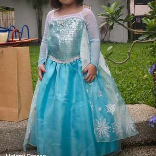 Original Disney Store Elsa Costume