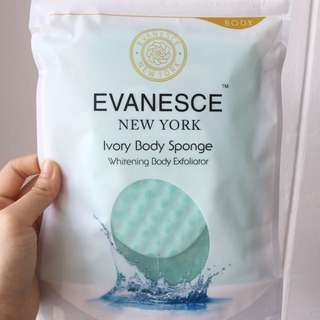 Whitening Face + Body Exfoliator Whitening Sponge Duo Pack by Evanesce