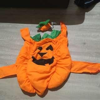 Halloween Dog Pumpkin Costume